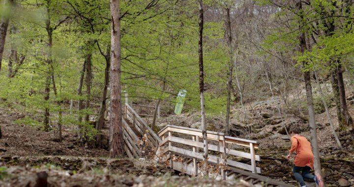 Le sentier de La Léchère-les-Bains est le premier site FORÊTsport® de France, marque déposée par l'ONF en 2016.